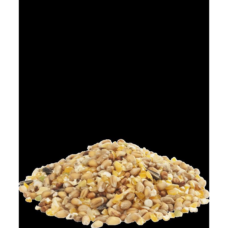 Getreidesorten, gebrochener Mais, Weizen, Erbsen und Sonnenblumenkerne